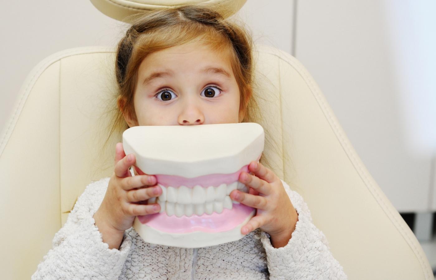 آشنایی با انواع دندان